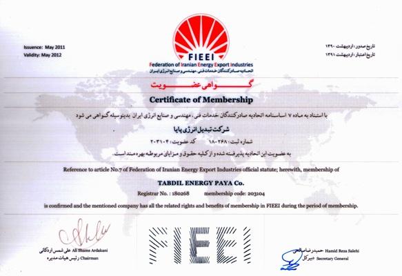 FIEEI Certificate